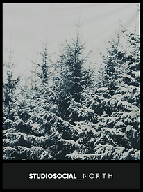 photo booth backdrop with winter trees design