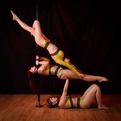 stage pole dance lyon 6.jpg