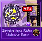 Matsubayashi Shorin Ryu Karate Volume 4.