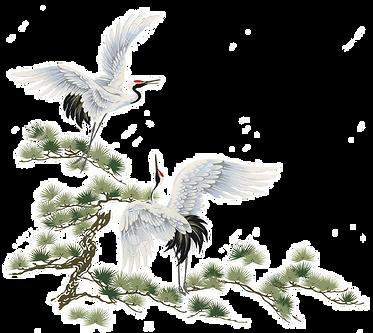 Transparent Crane Insert.png