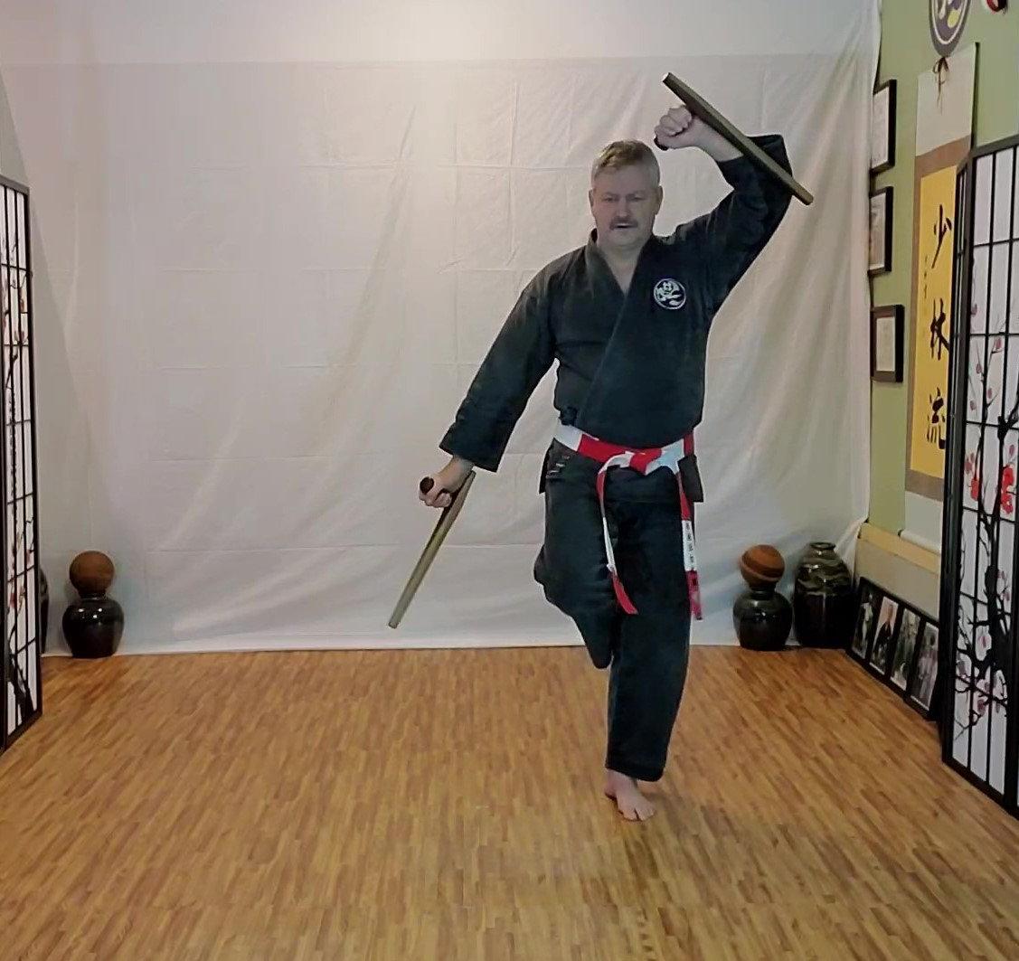 Private Ryukyu Kobudo Lessons