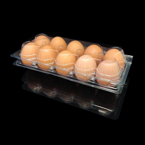 กล่อง EG-05 (กล่องไข่ 10 ฟองล๊อค)