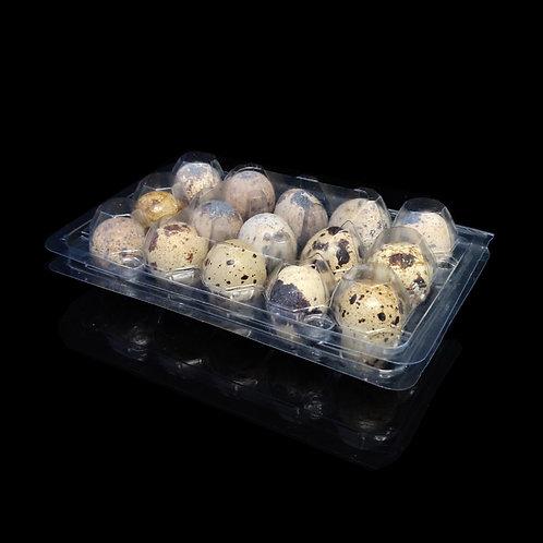กล่อง EG-08 (กล่องไข่นกกระทา 15 ฟอง)
