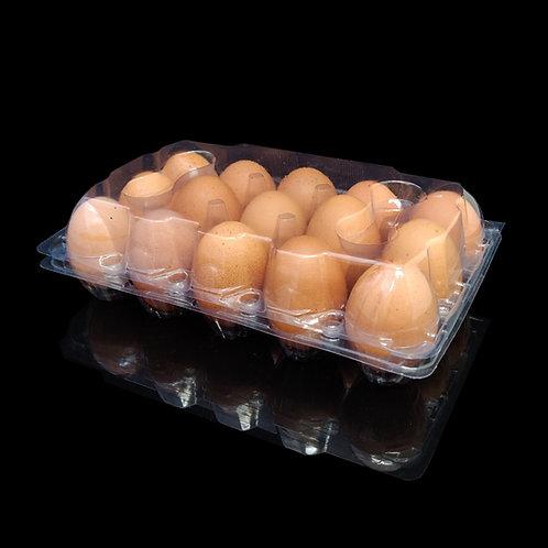 กล่อง EG-15 (กล่องไข่ 15 ฟองล็อค)