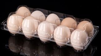 กล่องใส่ไข่