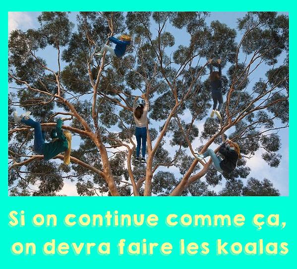 Beauvalle_cesimages_3.jpg