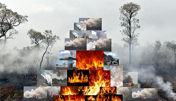 accumulation casavecchi 509 feu.jpg