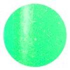 Prisma Color Gel Glamou Green