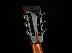Ebony Back Plate with Waverly Tuners
