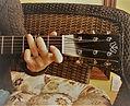 Aubrey Eisenman Guitars