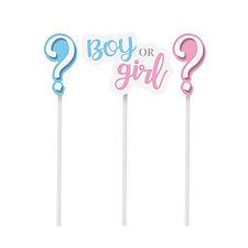topo_de_bolo_cromus_boy_or_girl_cha_reve