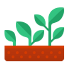 icons8-growing-plant-96 (1).png