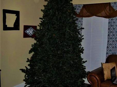Tree 101