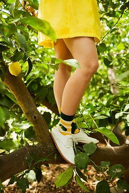 Calze The Lemons