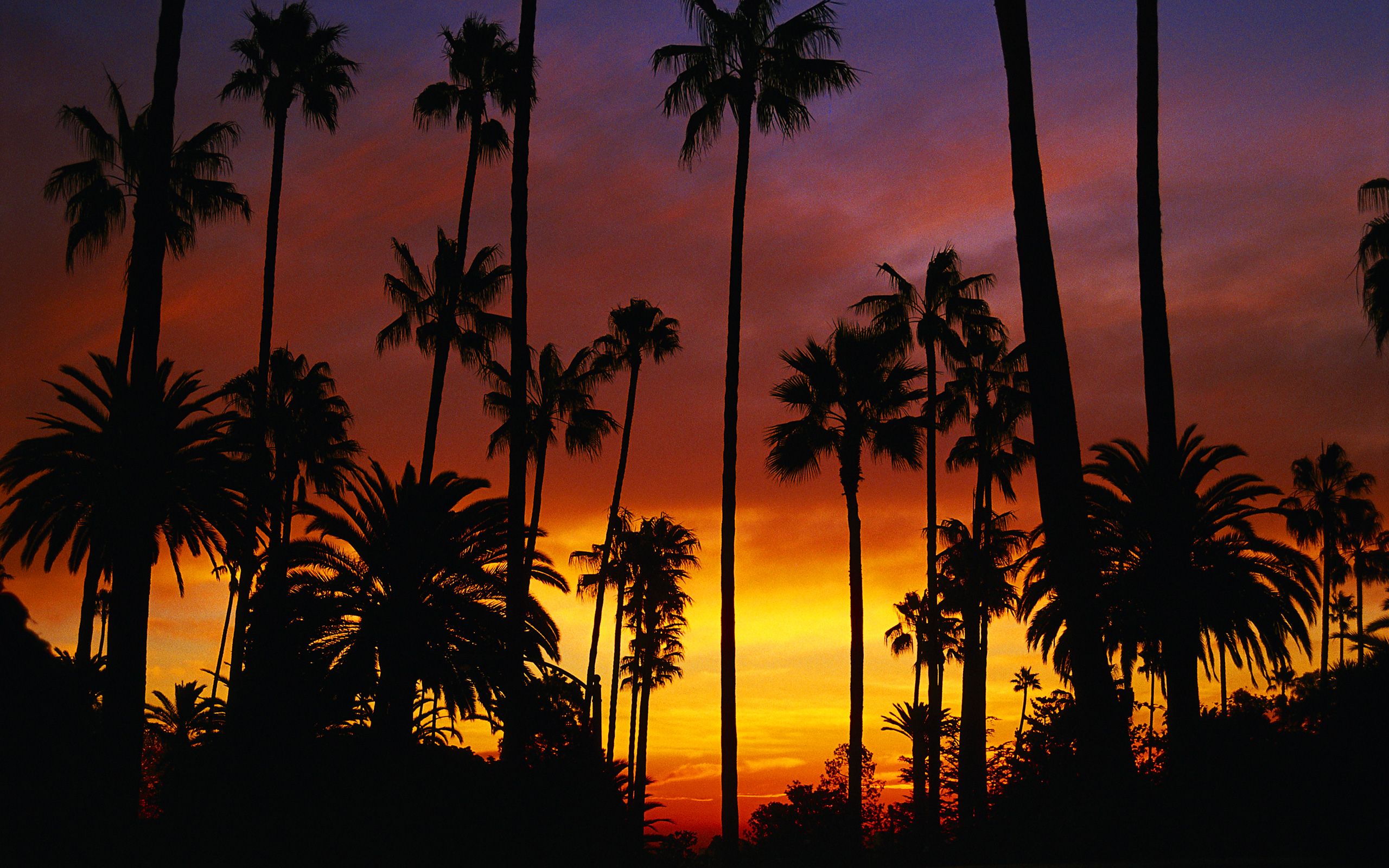 california_wallpaper_14