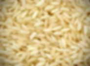 grain-Sona Masoori Steam Rice_edited.jpg