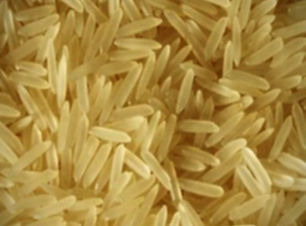 grain-1121 Golden Sella Rice_edited.jpg
