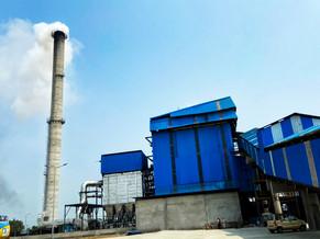 Biomass_Firozpur9.jpg