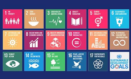 Environment-&-Sustainability.jpg