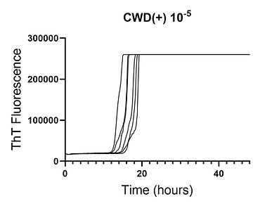 CWD(+) kinetic data.jpg
