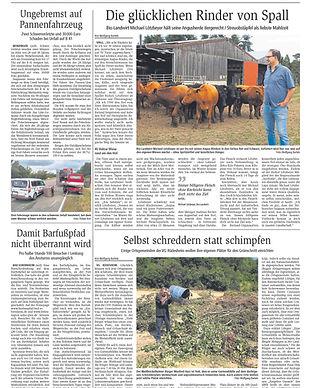 Presse_angusrind_Biolandhof_Lötzbeyer_