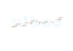 vibes_logo.png