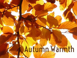 Autumn Warmth