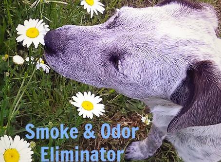 Smoke & Odor Eliminator