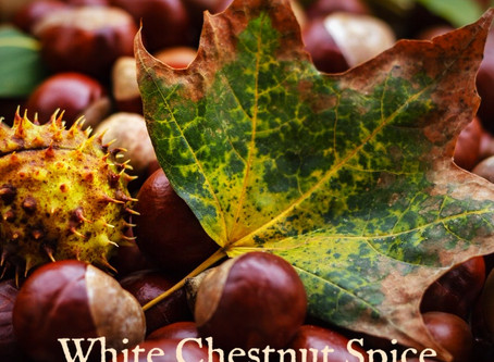 White Chestnut Spice