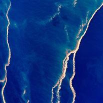 Aerial Photograph Coral Spawn