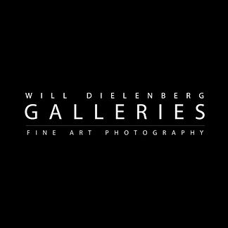 Will Dielenberg Galleries Contact