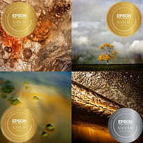 AIPP Victorian Landscape Photographer Of The Year