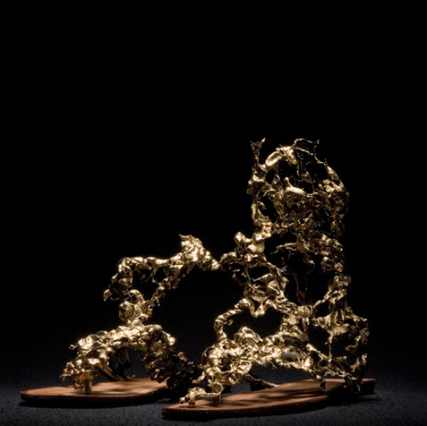 golden-ashes_shoes.jpg