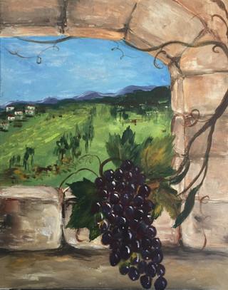 A Vine in Tuscany