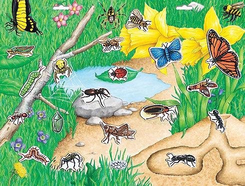Magnético de insectos