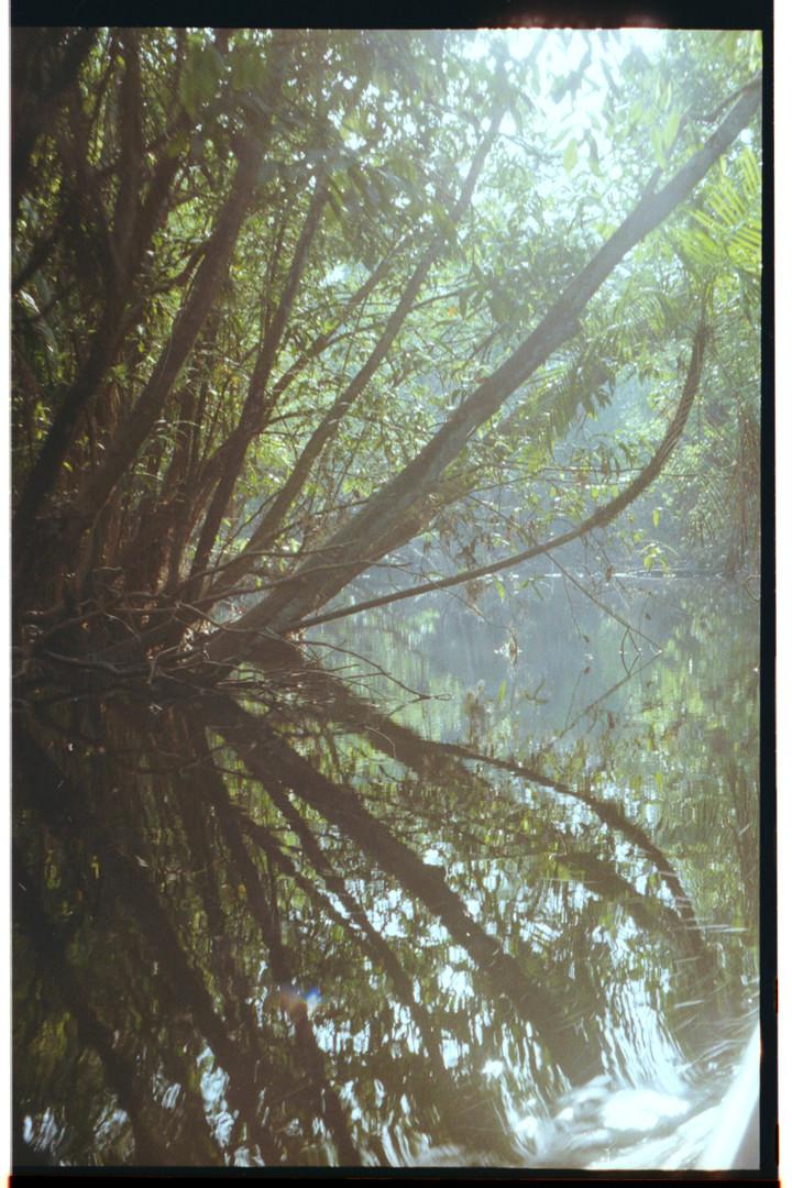 crazy spiegelung rio negro.jpg