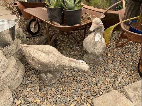 Garden Goose