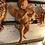 Thumbnail: Terracotta Angel