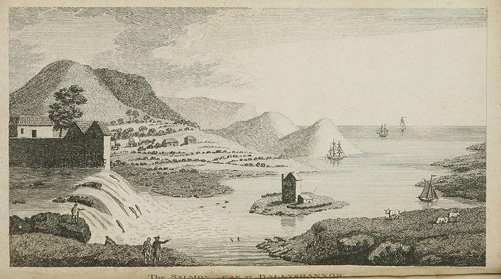 salmon leap 1775.jpg