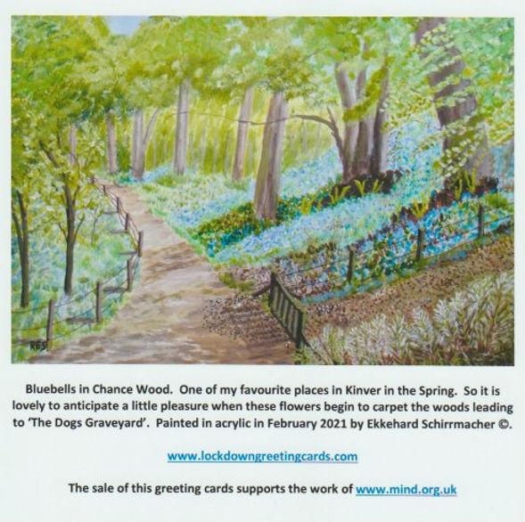Bluebells in Chance Wood.jpeg