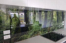 Digital Print Splashback of Rotorua Redwoods