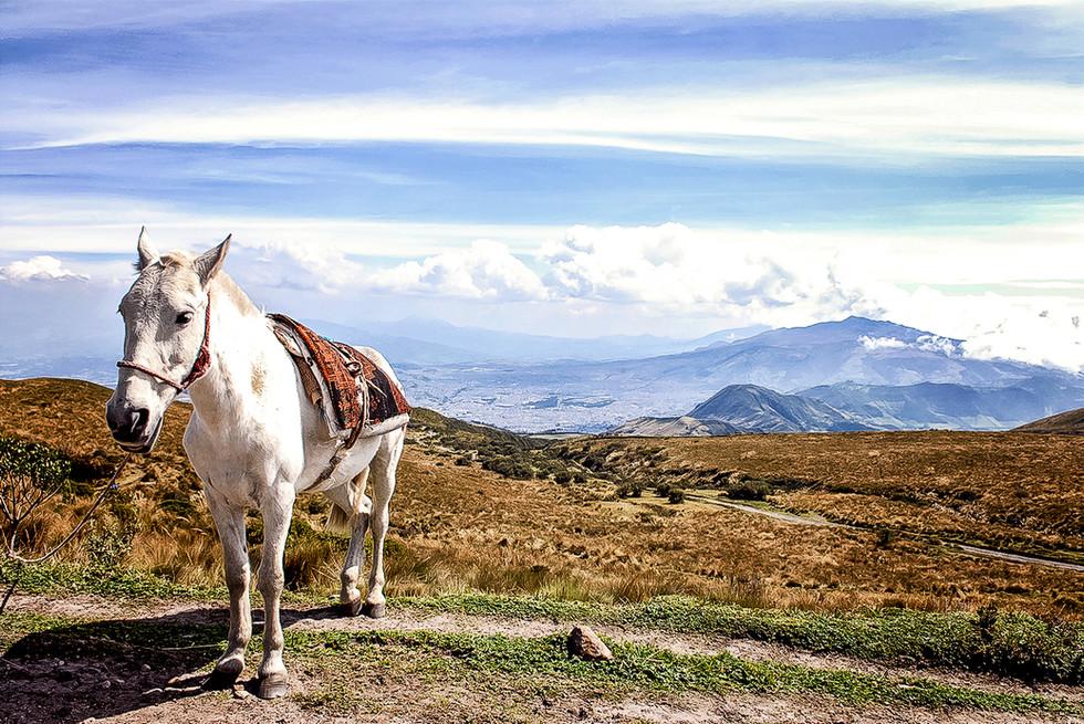 Travel_Photography_Equador_2.jpg