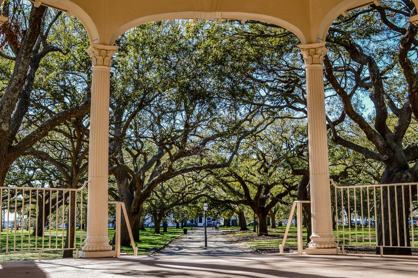 Charleston Print-8.jpg