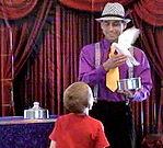 Phoenix Magician