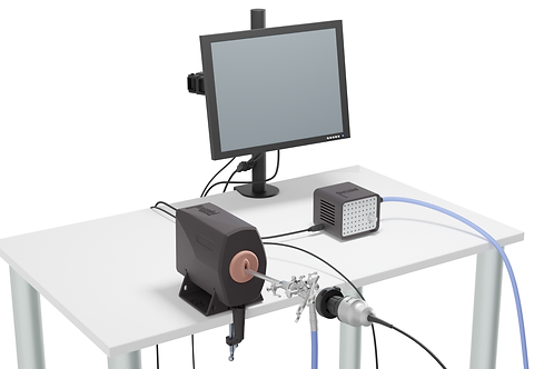 bozzini® Hysteroscopy Simulator - POA