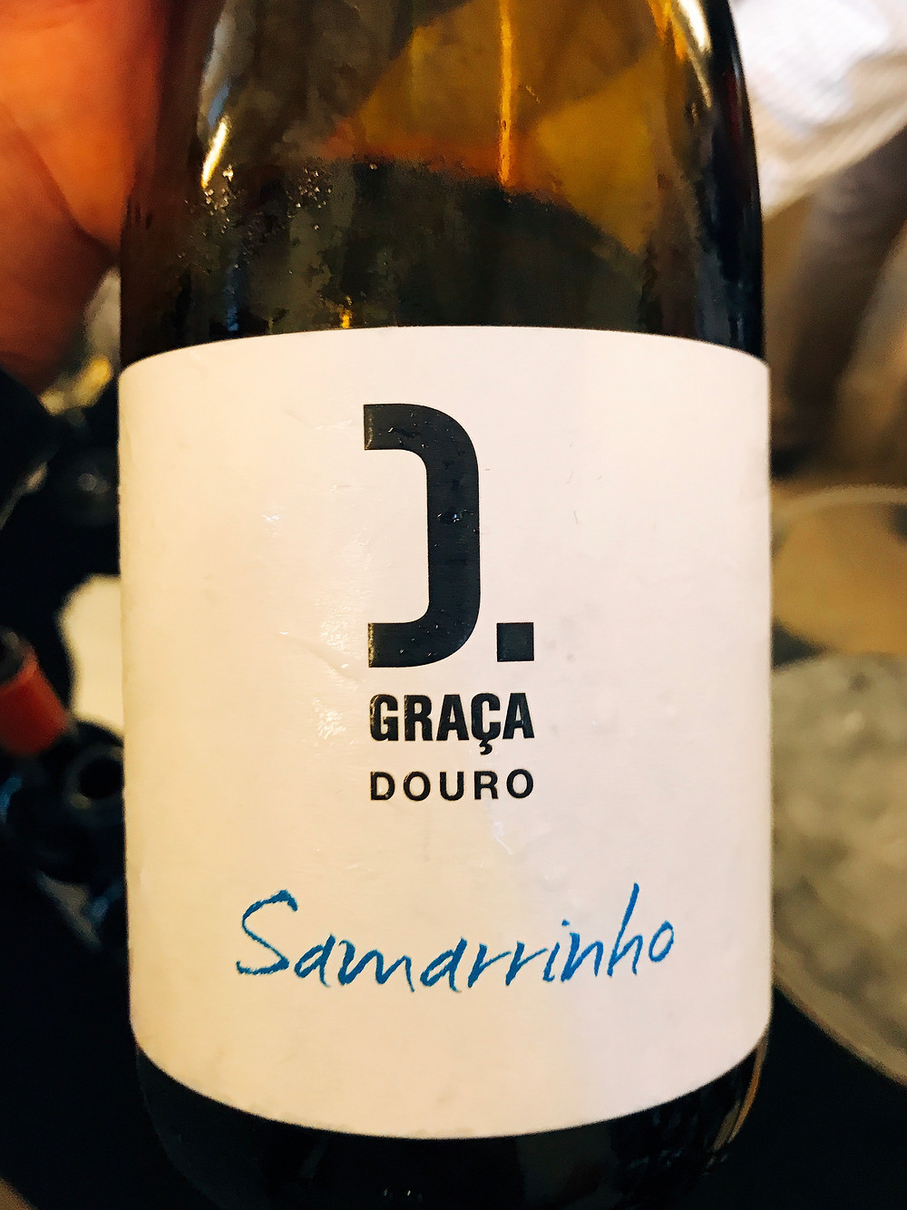 Wine Fest Porto 2017