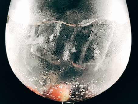 Aperitivo de Natal - Gin G'Vine Nouaison