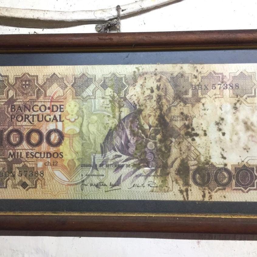 Nota 1000$ Tasca Zé da Quintinha