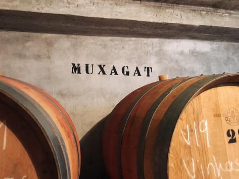 Muxagat Vinhos