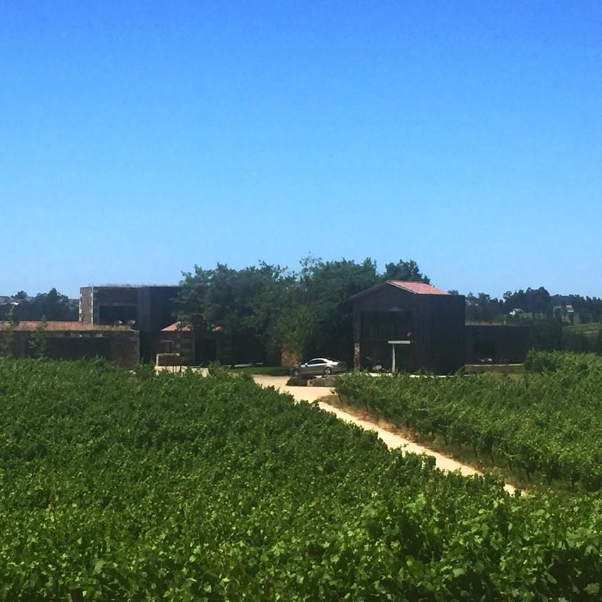 Monverde Hotel vinhas e quartos